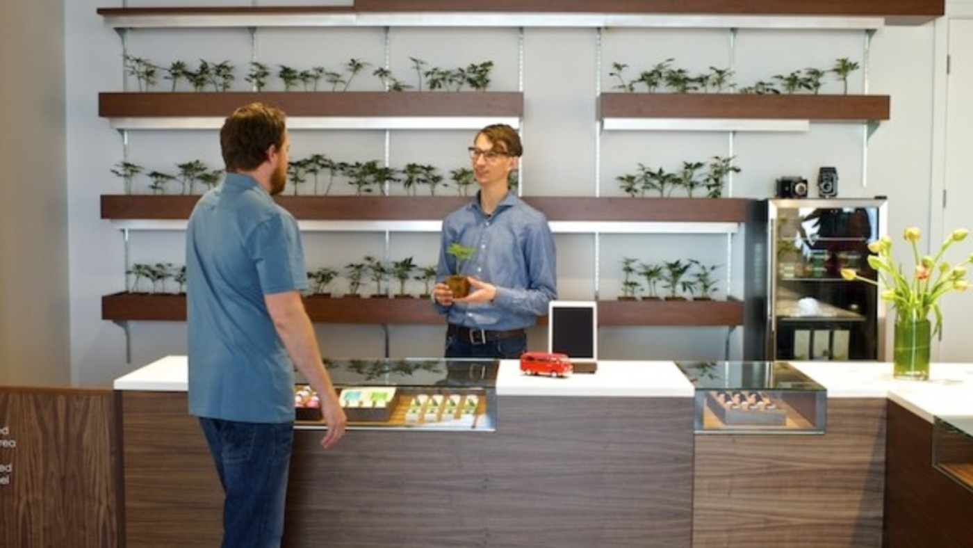 Techniques of finding the best cannabis dispensary