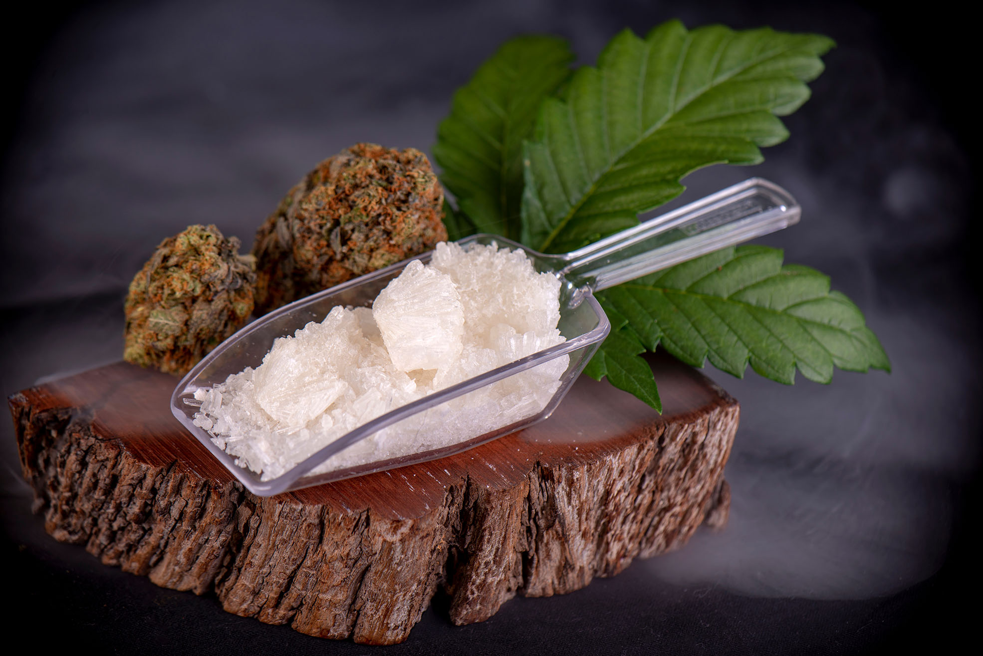 Few Popular Tasty Recipes Involving the Goodness of CBD Isolate